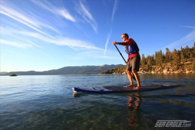 Stand Up Paddleboards (SUP's)